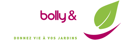 Bolly Beckers